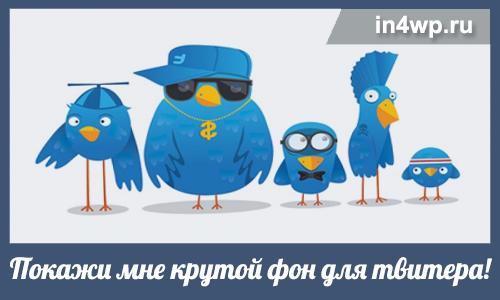 фон для твитера