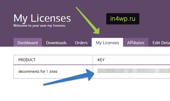 копируем лицензионный ключ